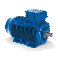 Moteur electrique 3 kW 1000 tr/min 230/400V triphasé WEG W22 - Bride B3