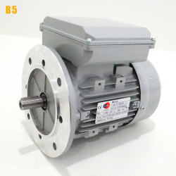 Moteur electrique 0,55 kW 3000 tr/min 220V monophasé ALMO MMD - Bride B5