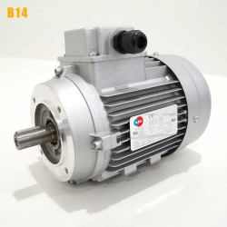 Moteur electrique 0,25 kW 3000 tr/min 230/400V triphasé ALMO MH1 - Bride B14