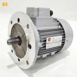 Moteur electrique 0,25 kW 3000 tr/min 230/400V triphasé ALMO MH1 - Bride B5