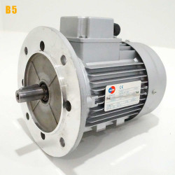 Moteur electrique 1,5 kW 3000 tr/min 230/400V triphasé ALMO MH1 - Bride B5